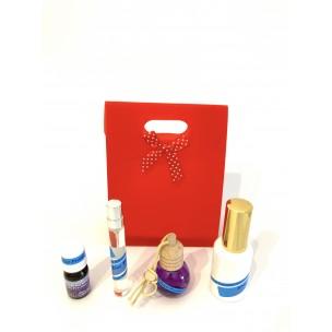 Pack Noël Spray 30ml
